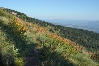 Trail into Crystal Lake