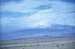 아라라트산