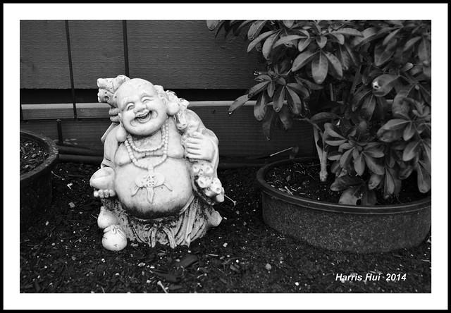 歡喜佛 Laughing Buddha N13985e