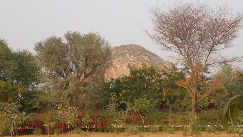 View of Achrol Bagh