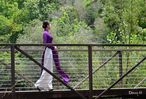 Ao Dai Tim Hue - Vietnamese Traditional Dress | Ao Dai Tim H… | Flickr