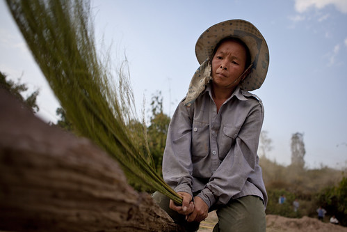 A farmer from Houangmeuang village | by DFAT photo library