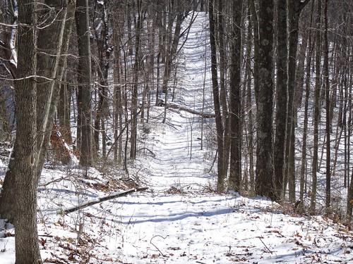 winter house mountain snow cold frozen hiking walk smoke hike trail fallentree