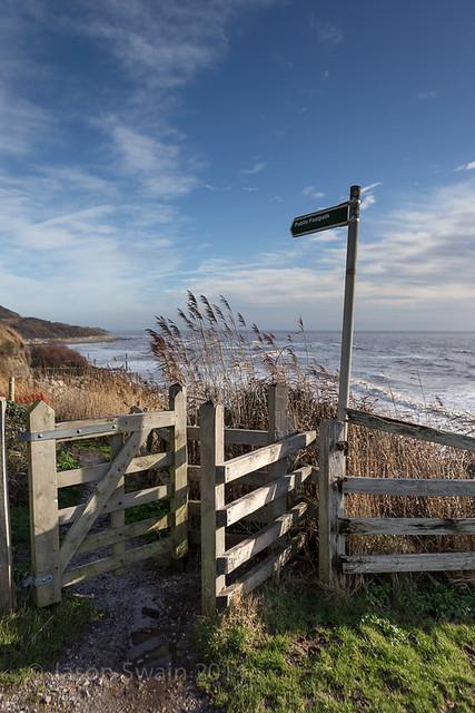 Coastal path to Niton, Isle of Wight - IMG_8333