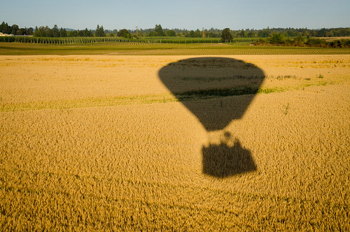 shadow field oregon wheat grain hotairballoon
