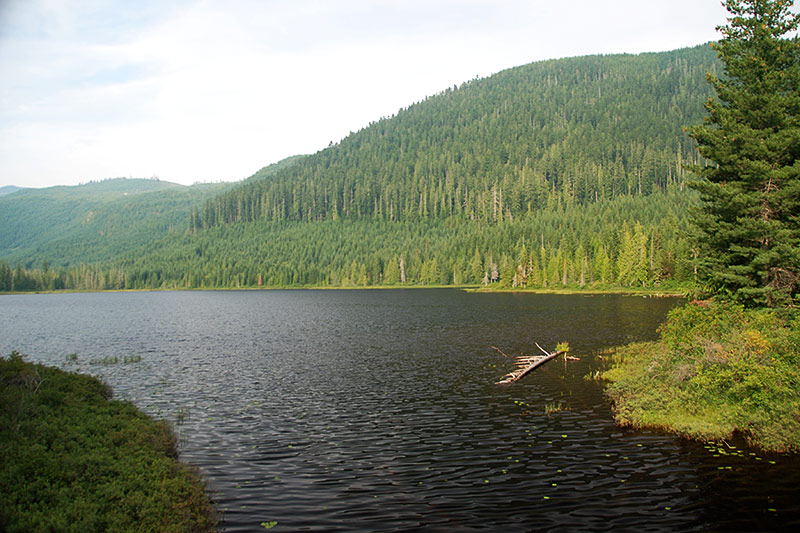 Woss Lake in Woss, North Vancouver Island, British Columbia, Canada