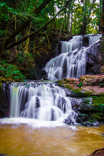 wood kenya nairobi streamwaterfall karuraforest