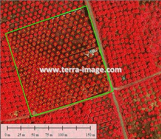 Red | by Satellite Imagery and Mapping