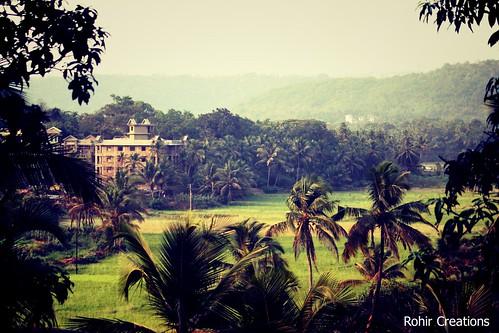 Veling Photo Walk | by Rohir Creations