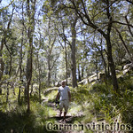 06 Viajefilos en Australia. Cathedral Rock NP 07