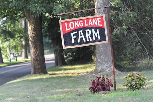 Long Lane Farm