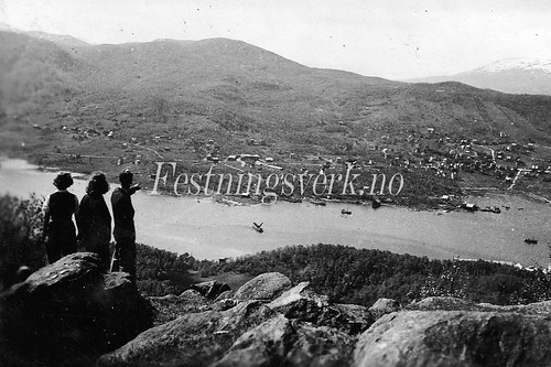Harstad fra Gansåstoppen (1839)