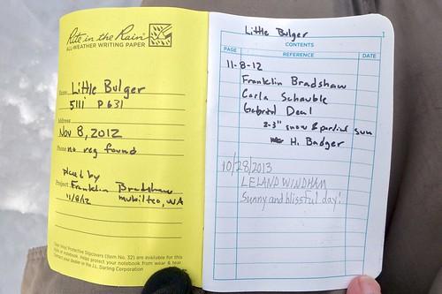 Little Bulger   by nwpuzzlr