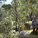 06 Viajefilos en Australia. Cathedral Rock NP 06
