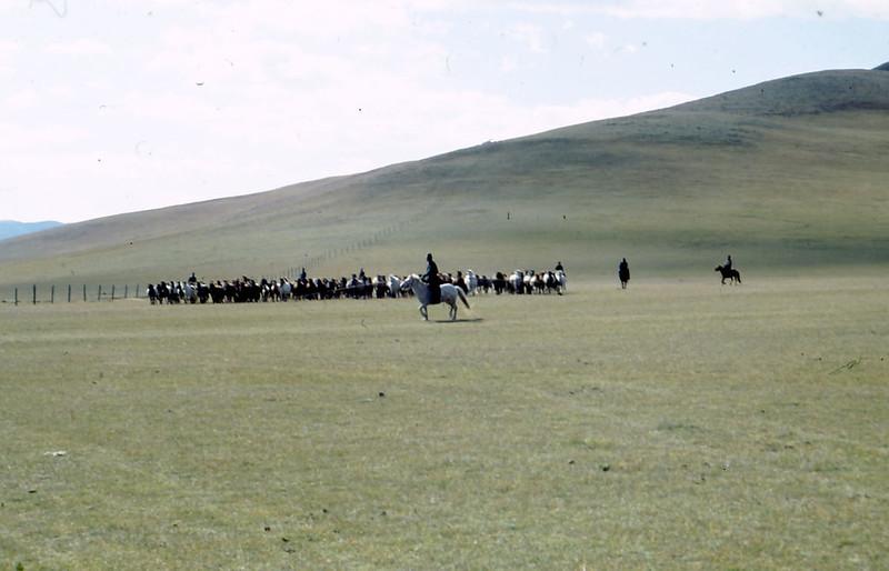 MONGOLIA-PAESAGGI-02-0026