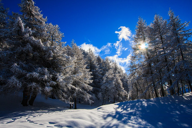 Dicono in Paradiso ci sia la Neve