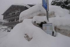 Zastávka - ve čtvrtek před sněžením