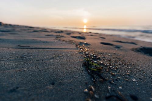 ocean summer beach sunrise island us newjersey unitedstates nj lbi longbeachisland atlanticocean oceancounty surfcity