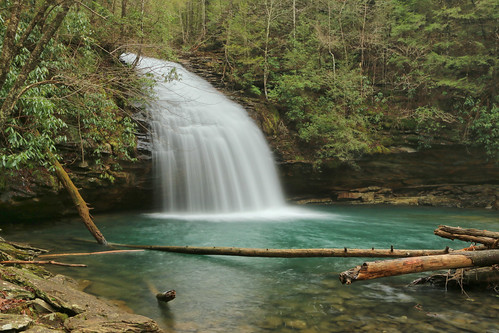 Stinging Fork Falls, Stinging Fork, Stinging Fork Falls State Natural Area, Walden Ridge, Rhea County, Tennessee 1 | by Alan Cressler