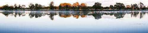morning mist sunlight landscape panorama river trees tuncurry wallambariver darawank