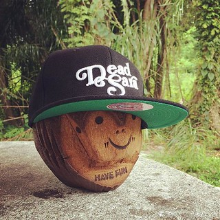 We are selling our new classic snapbacks this tour but you can also order it from our pals at @districtlines
