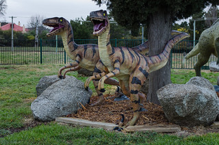 National Dinosaur Museum, Canberra. | by smjbk