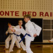 Sat, 09/14/2013 - 09:53 - Photos from the Region 22 Fall Dan Test, held in Bellefonte, PA on September 14, 2013.  Photos courtesy of Ms. Kelly Burke, Columbus Tang Soo Do Academy