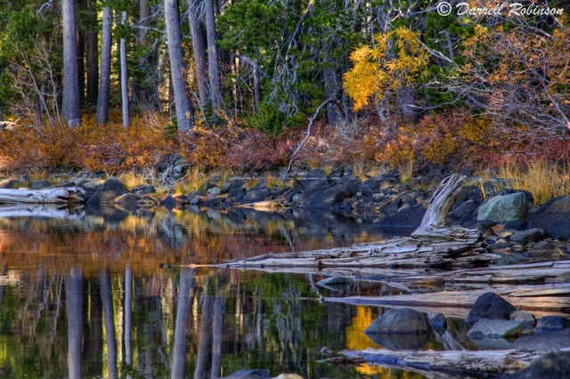 Goose Lake Autumn Reflections