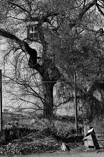 Urban erosion | by R A Pyke (SweRon)