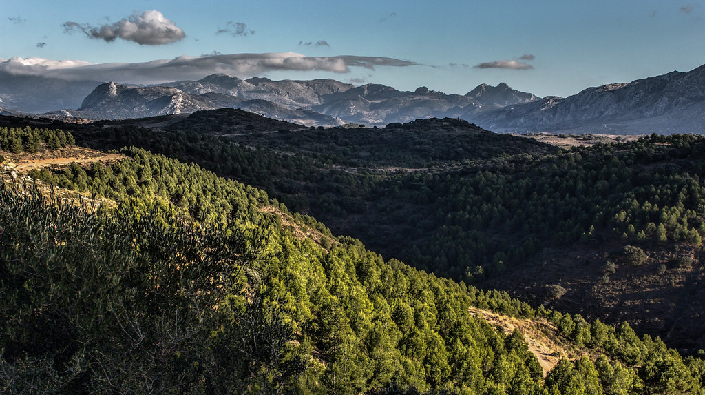 Montes de Malaga from Romeral