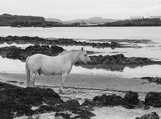 89080714 Eigg harbour | by james austin (photographer)