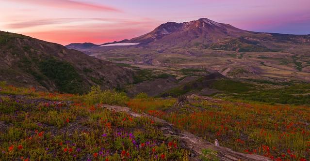 Good Morning, Mt St Helens! ( Mt St Helens NP, WA)