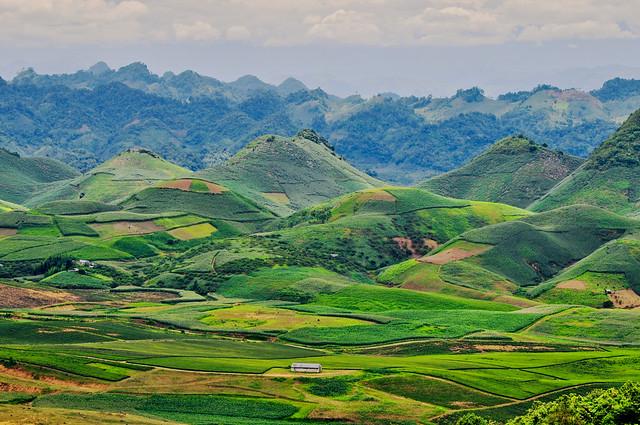 NDP_5325-2 | Moc Chau Plateau