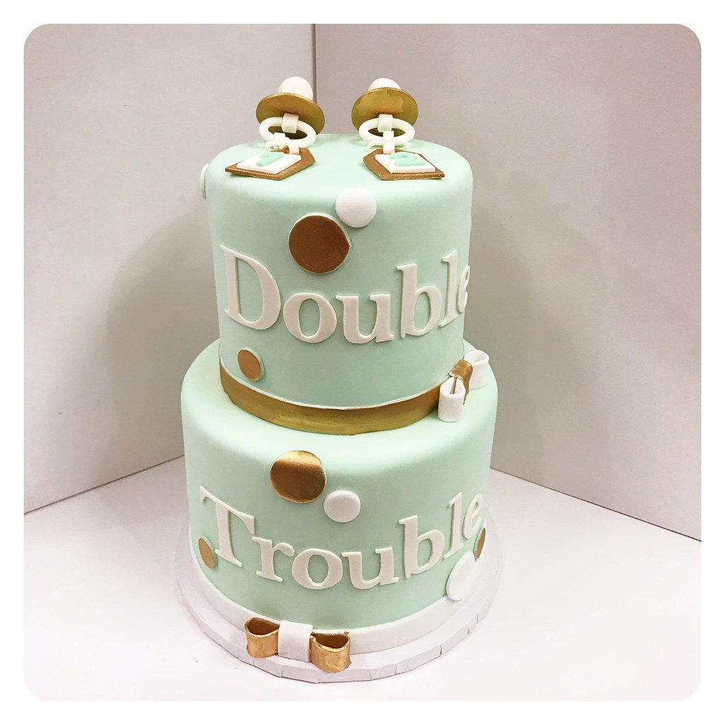 Double Trouble Custom Baby Shower Cake! | Lilly Magilly's