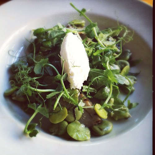 Grilled artichoke with Perroche goat cheese, broad beans and mint | by Fiona Beckett