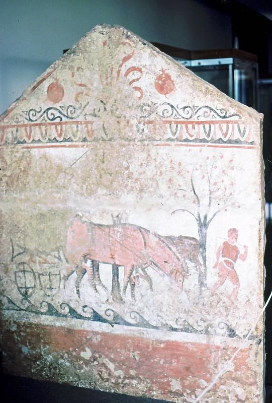 Paestum01-0055