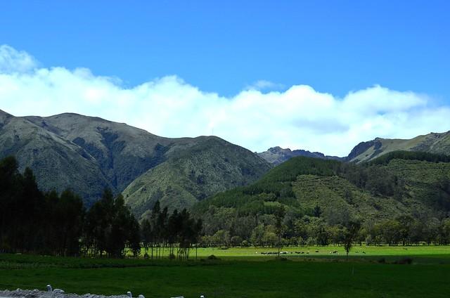 Hacienda Zuleta - Ibarra.