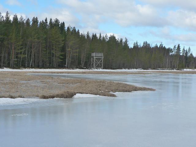Ice of lake Mulkkujärvi and the bird tower at backround