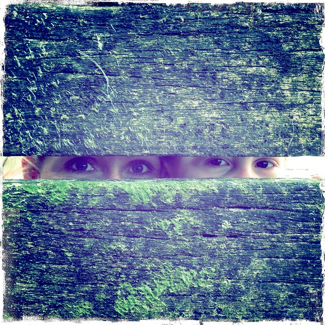 Eye Phone Photo