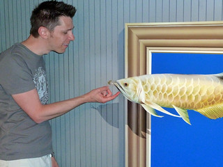 Fish @ Trick Art Museum | by Rob Young