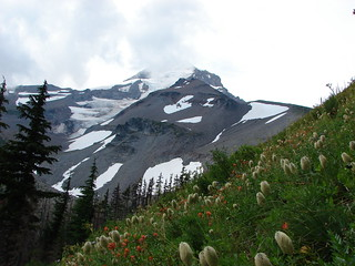 Mt. Hood from the Timberline Trail near Elk Cove