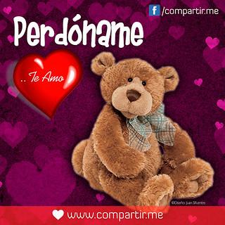 Frases De Amor Frase Pedóname Te Amo Con Osito De Peluch