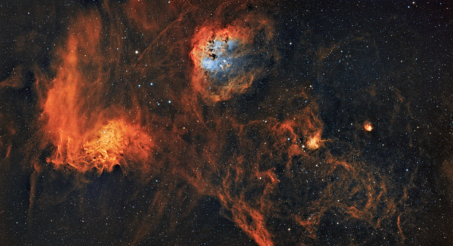 IC410, IC405, IC417 and NGC1931 (The tadpoles Flaming star, spider and fly) in colour