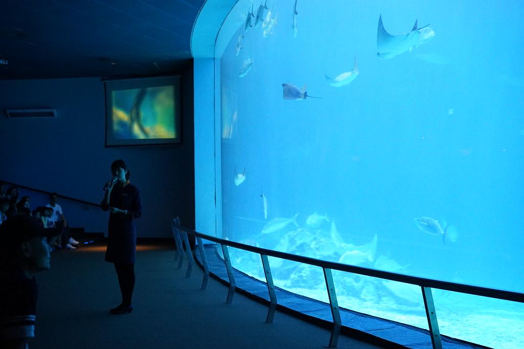 国立海洋生物博物館_20
