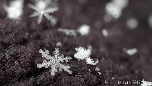 Snowflake 3.14.17
