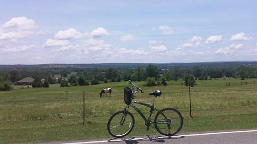 horses cycling countryside arkansas hilltopview folate