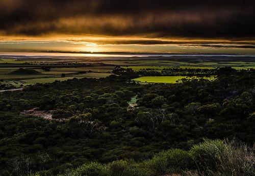 australia westernaustralia narratarra