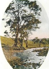 North Para River
