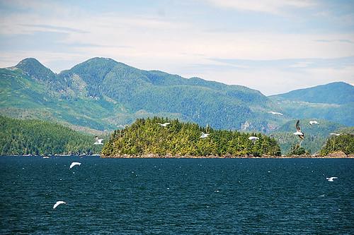 Hosie Island in Trevor Channel, Barkley Sound, West Coast Vancouver Island, British Columbia