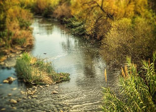 california river losangeles